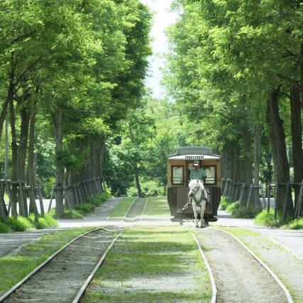 札幌市厚別区・森林公園駅から野幌森林公園でタイムトリップ体験♪