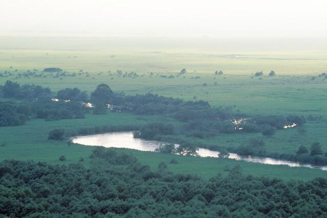 釧路湿原 ~日本最大の湿原で動物ウォッチング~