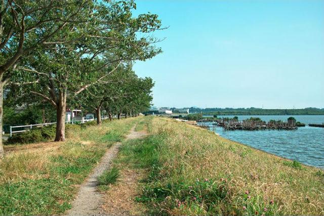 【海の駅 散策12】ラクスマリーナ周辺コースの画像