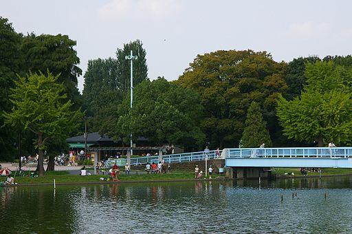 公園を歩こう-都立水元公園-