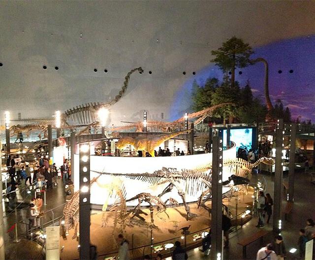 勝山の恐竜-勝山城ウォーキング