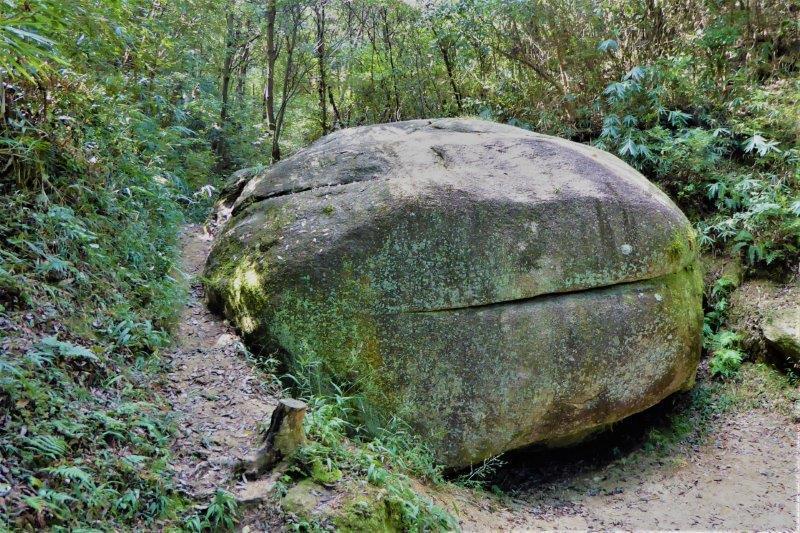 ハンバーガー岩