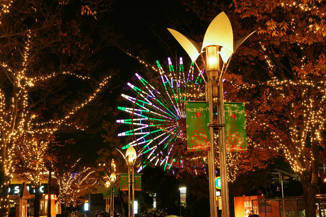 【神戸市中央区】夜景とイルミネーションをめぐる