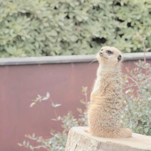 日向住吉駅から宮崎市内の芸術と自然の文化施設を巡るの画像